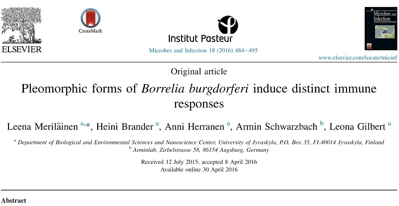 Новости науки 2 published scientific papers about Borrelia burgdorferi